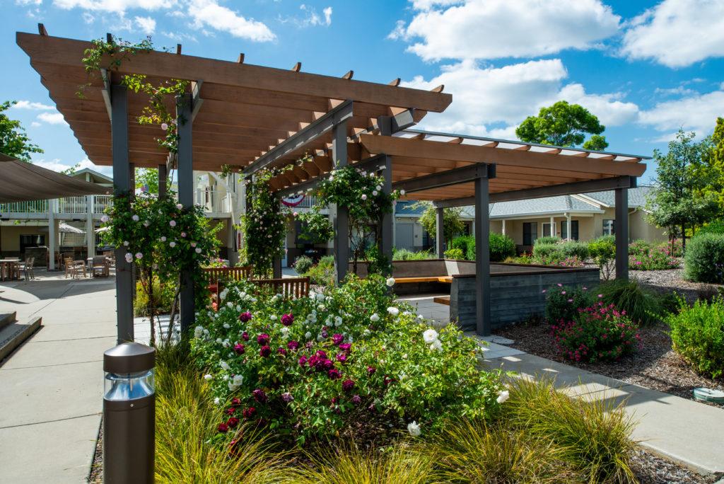 Golden Oaks Landscape Renovation